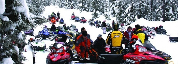 A big group of snowmobilers standing around their snowmobiles in a snowy field with pine trees covered inn snow on the outskirts