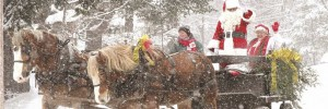 A horse drawn carriage pulling Santa and mrs clause on a snowy winter day