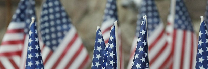 a bunch of small American flags standing