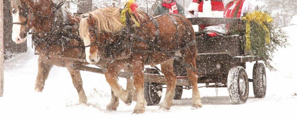 santas horse drawn sleigh