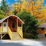 Log cabins in the woods that are changing into bright fall foliage