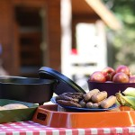 Food for cookout on a checkered tablecloth with a log cottage in the background